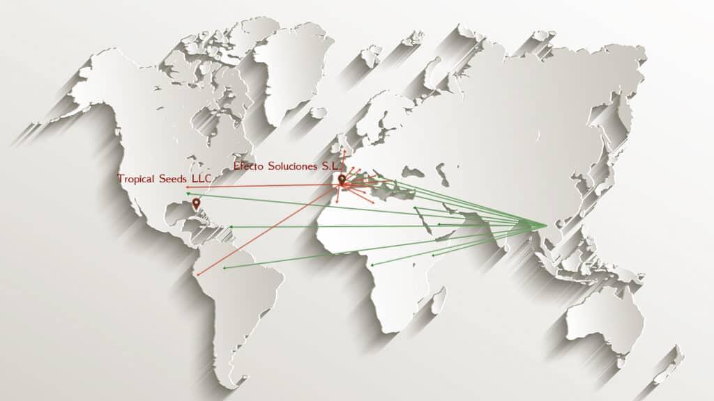 Mapa mundo esseeds